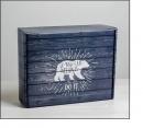 Коробка темная 27х9х21